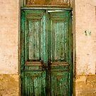 Egyptian Green Door by Hena Tayeb