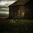 Farm by Kimcalvert