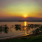Lake thunderbird,Norman Oklahoma USA by JohnDSmith