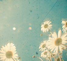 Daydream by Cassia