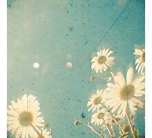 Daydream Photographic Print