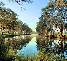 Resting by the Condamine by Higginsstormcha