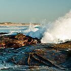 Breaking Wave by DavidsArt