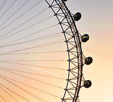 The London Eye at Sunset by Jane Ruttkayova