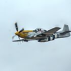 """P51D Mustang """"Ferocious Frankie"""" by Stephen Hall"""