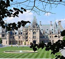 Framing the Biltmore by Brian Gaynor