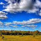 NorthWoods of Wisconsin by Adam Kuehl