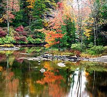 New England Autumn #1 by pjphoto181