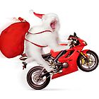 Cute kitty Santa on motorcycle with bag of Christmas presents by ArtNudePhotos