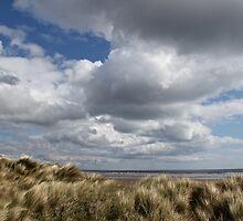 Wind swept by Greta van der Rol