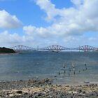 River Forth and Forth Rail Bridge by Pat Millar