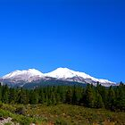 Mount Shasta by Tracy Jones