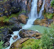 White River Falls, Tygh Valley, Oregon by Patricia Shriver