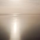 Looking into Lake Eyre, South Australia by Norman Repacholi
