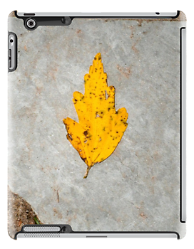 slate leaf by arteology