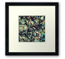 Vintage Blossoms - Triptych Framed Print
