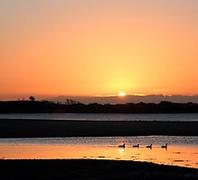 Sunrise Dundrum Bay by Wrayzo