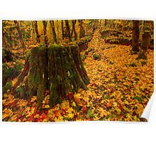 Fall Leaves Mosaic Poster