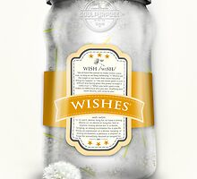 """Soul Purpose"" Collection: Wishes © in White Jar by soaringanchor"