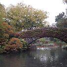 Central Park Bridge Autumn Colors, New York City by lenspiro