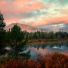 Peaceful Oxbow Bend by KellyHeaton