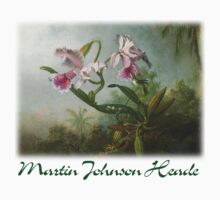 Martin Johnson Heade - Orchid and Hummingbirds by William Martin