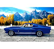 1967 Shelby Cobra Mustang GT 500 Photographic Print