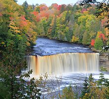 Michigan's Tahquamenon Falls by Kenneth Keifer