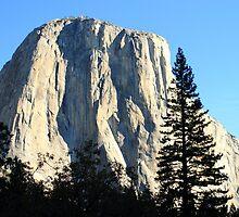 Yosemite Rocks by DARRIN ALDRIDGE