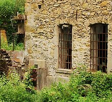 Abandoned Mill Near Salino 4 by jojobob