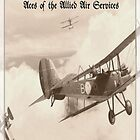 Aces of the Allied Air Services (WW I) by A. Hermann