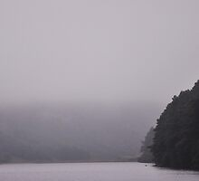 A dreary day at the lake by Farrah  Jones