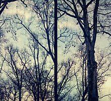 winter in Berlin by Rebecca Tun
