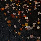 Autumn Leaves 2013 #9046 by sensameleon