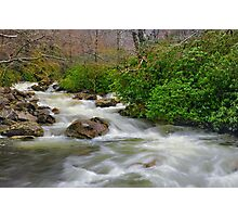 Spring Brook Photographic Print