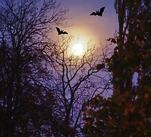 Moonlight Bats by AnnDixon