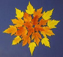 Autumn color palette by Veikko  Suikkanen