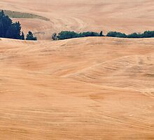 La Pelouse 1 from Steptoe Butte, Washington by Charlotte007