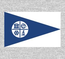 Minneapolis, Minnesota Flag by cadellin