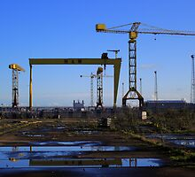 Harland & Wolff Crane Collection by Wrayzo