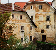 Historic Buildings in Skofja Loka 3 by jojobob