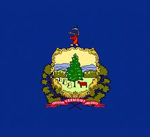 Smartphone Case - State Flag of Vermont IV by Mark Podger