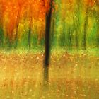 Artscape magical Autumn by Imi Koetz