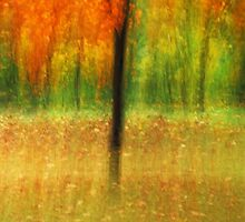 Artscape magical Autumn by Imi Koetz