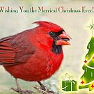 Wishing You the Merriest Christmas Ever! by Bonnie T.  Barry