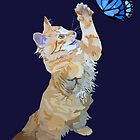 Kitten hunts butterfly by stinaq