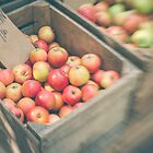 Market Day Apples by Bethany Helzer