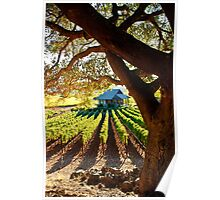 Napa Valley Homestead Poster