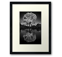 Zen Tree Framed Print