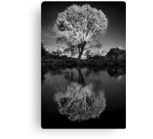 Zen Tree Canvas Print